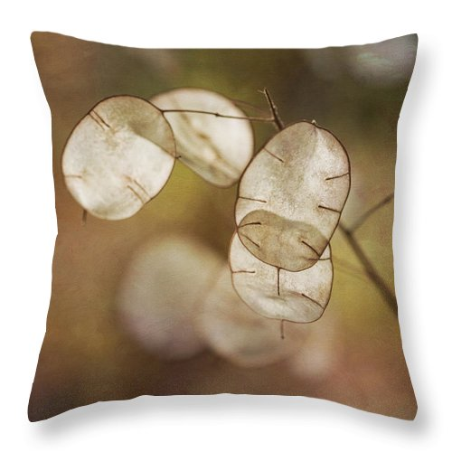 Money Plant Throw Pillow featuring the photograph Money Plant by Dale Kincaid