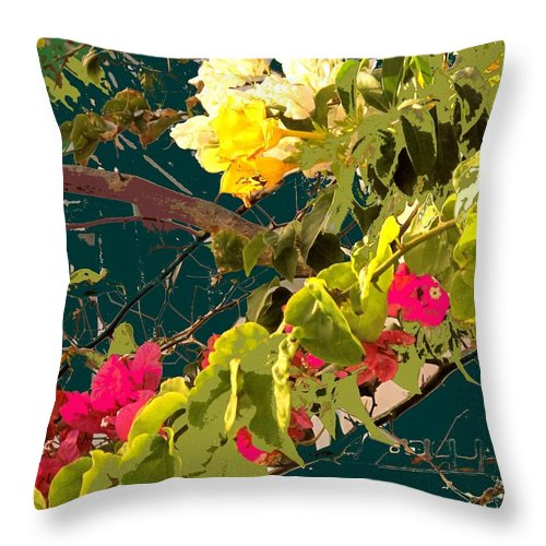 Throw Pillow featuring the photograph Monica by Ian MacDonald