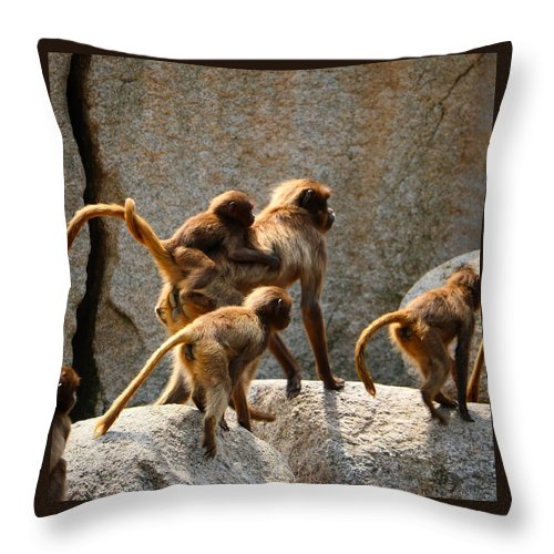 Animal Throw Pillow featuring the photograph Monkey Family by Dennis Maier