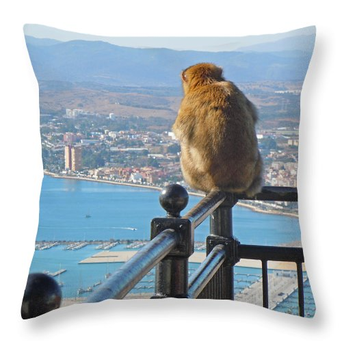Europe Throw Pillow featuring the photograph Monkey Overlooking Spain by Heather Coen