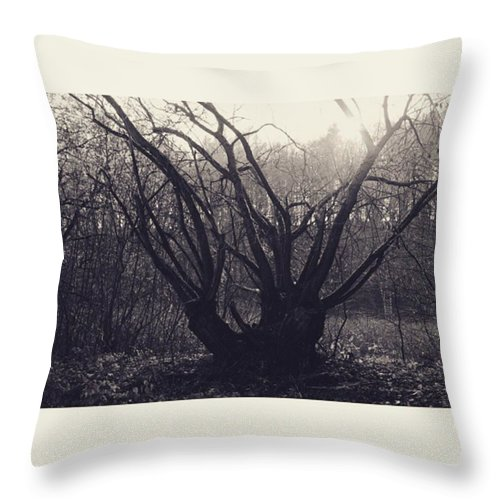 Monochrome Throw Pillow featuring the photograph #monochrome #canon #tree #blackandwhite by Mandy Tabatt