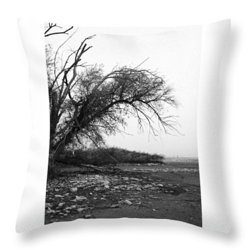 Monochrome Throw Pillow featuring the photograph #monochrome #lake #landscape #stausee by Mandy Tabatt