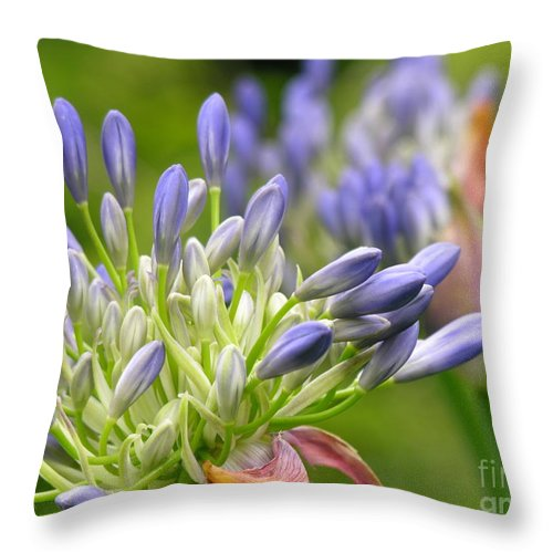 Blue Throw Pillow featuring the photograph Montana Purple And Blue by Diane Greco-Lesser