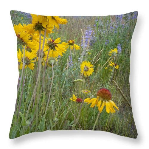 Mission Mountains Throw Pillow featuring the photograph Montana Wildflowers by Idaho Scenic Images Linda Lantzy