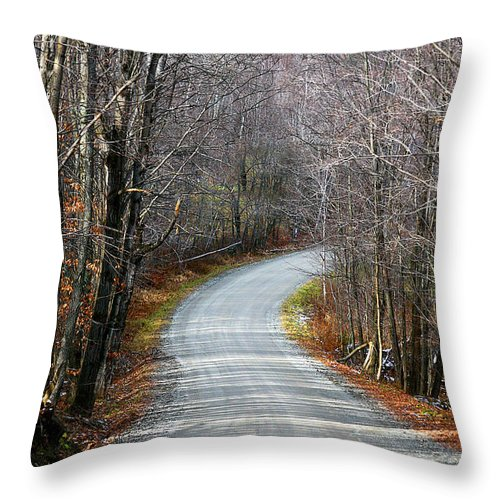 Road Throw Pillow featuring the photograph Montgomery Mountain Road by Deborah Benoit