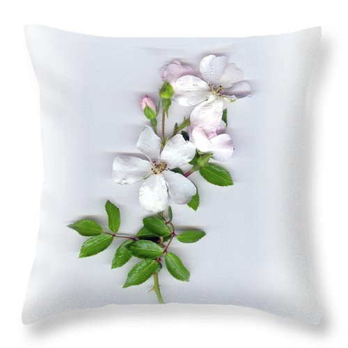 Moon River Rose Throw Pillow featuring the mixed media Moon River Rose by Sandi F Hutchins