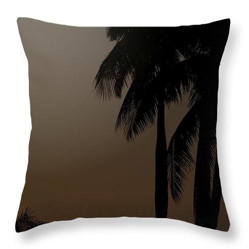 Moonlight Throw Pillow featuring the photograph Moonlight And Palms by Diane Merkle
