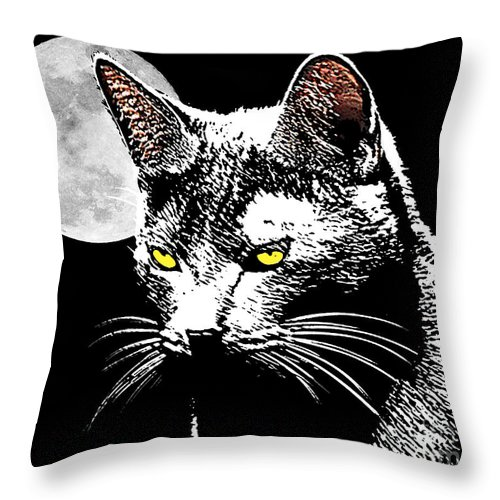 Cat Throw Pillow featuring the photograph Moonlight Grays by Laura Brightwood