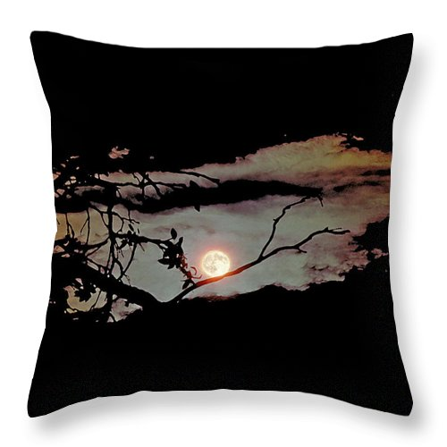 Moon Throw Pillow featuring the photograph Moonrise by Thomas Firak