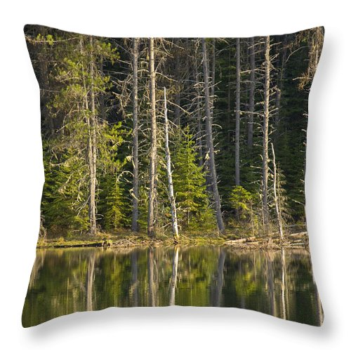 Trees Throw Pillow featuring the photograph Moose Creek Reservoir by Idaho Scenic Images Linda Lantzy