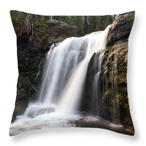 Moose Falls Throw Pillow featuring the photograph Moose Falls Yellowstone National Park by Teresa Zieba