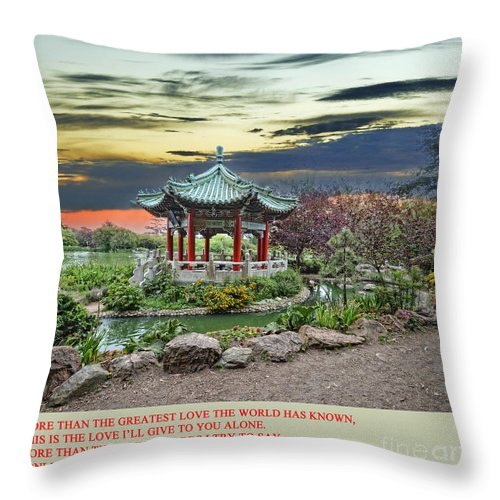 Sunset Throw Pillow featuring the photograph More Than The Simple Words I Try To Say by Jim Fitzpatrick