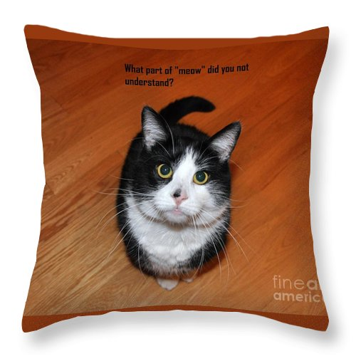 Animals Throw Pillow featuring the photograph More Words From Teddy The Ninja Cat by Reb Frost