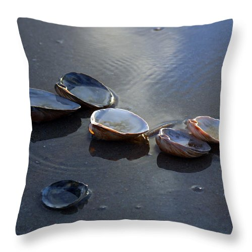 Shells Throw Pillow featuring the photograph Morniing Clams II by Mary Haber
