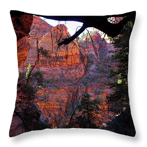 Utah Throw Pillow featuring the photograph Morning At Zion National Park by Rona Black