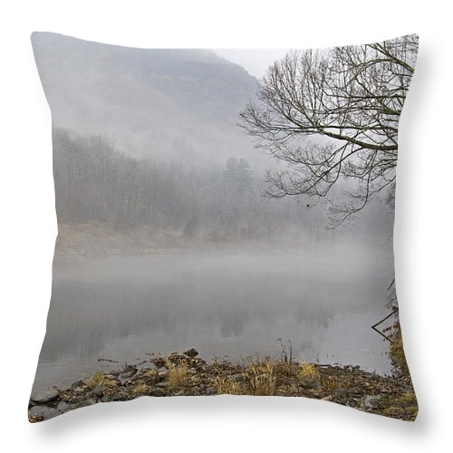 Water Throw Pillow featuring the photograph Morning Calm by Tom Heeter