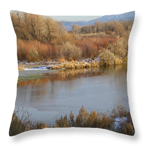 River Throw Pillow featuring the photograph Morning Chill by Gale Cochran-Smith