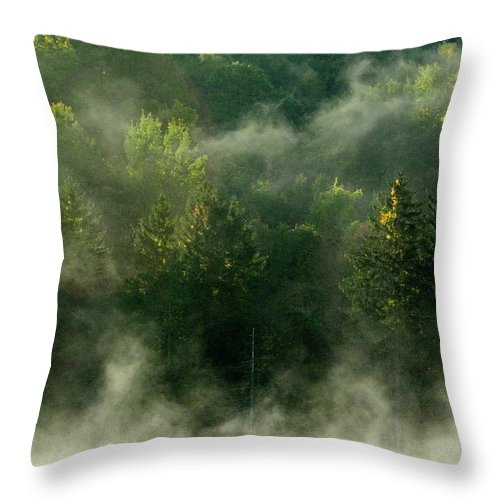 Fall Foliage Throw Pillow featuring the photograph Morning Fire by Tom Heeter
