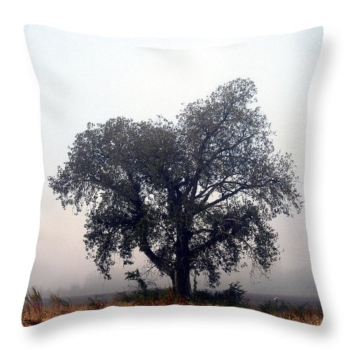 Fog Throw Pillow featuring the photograph Morning Fog - The Delta by D'Arcy Evans