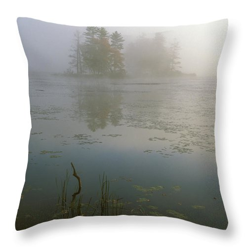 Pond Throw Pillow featuring the photograph Morning Fog At Harvard Pond by John Burk