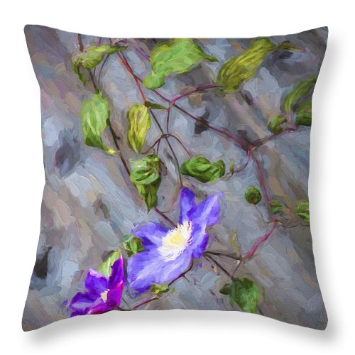 Flowers Throw Pillow featuring the photograph Morning Glory by Sheila Smart Fine Art Photography