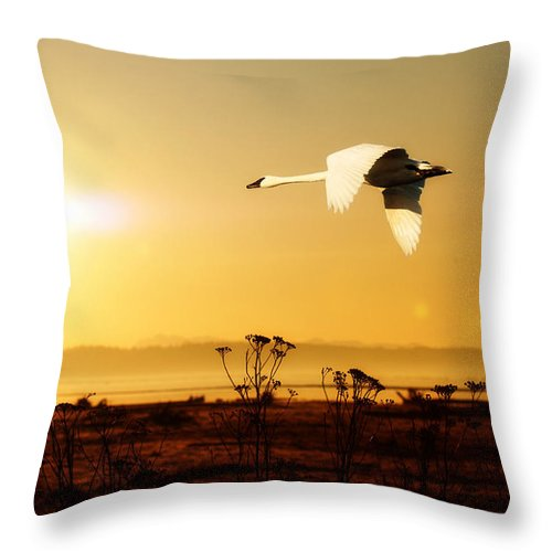 Morning Glow Over The Marshes Throw Pillow featuring the photograph Morning Glow Over The Marshes by Beve Brown-Clark Photography