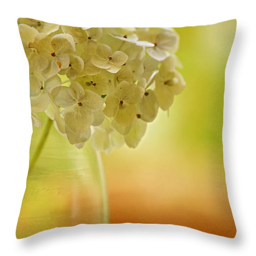 Still Life Throw Pillow featuring the photograph Morning Has Broken by Bonnie Bruno
