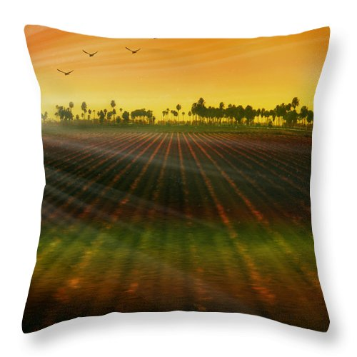 Landscape Throw Pillow featuring the photograph Morning Has Broken by Holly Kempe