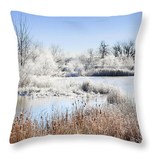 Hoar Frost Throw Pillow featuring the photograph Morning Hoar Frost by Marilyn Hunt
