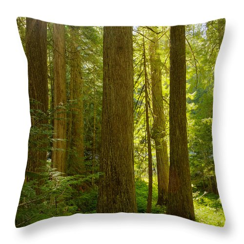 Idaho Throw Pillow featuring the photograph Morning In Devoto by Idaho Scenic Images Linda Lantzy