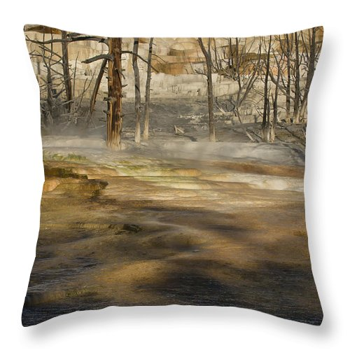 Yellowstone Throw Pillow featuring the photograph Morning Light On Mammoth Terrace by Sandra Bronstein