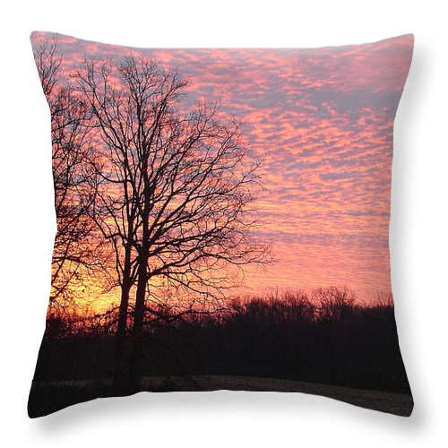 Throw Pillow featuring the photograph Morning Light by Luciana Seymour