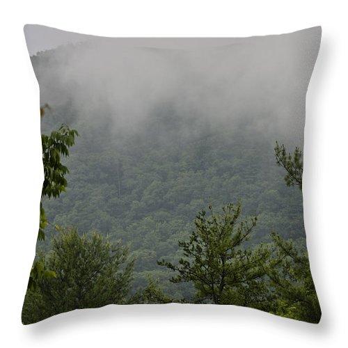 Bluestone Throw Pillow featuring the photograph Morning Mist Bluestone State Park West Virginia by Teresa Mucha