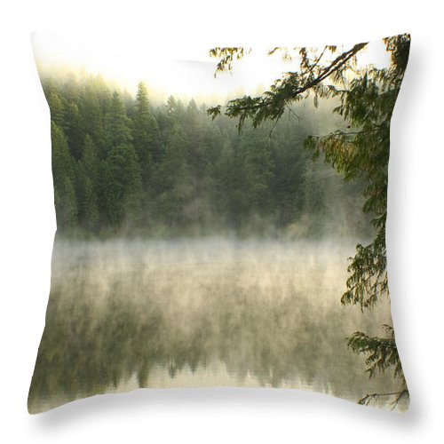 Mist Throw Pillow featuring the photograph Morning Mists by Idaho Scenic Images Linda Lantzy