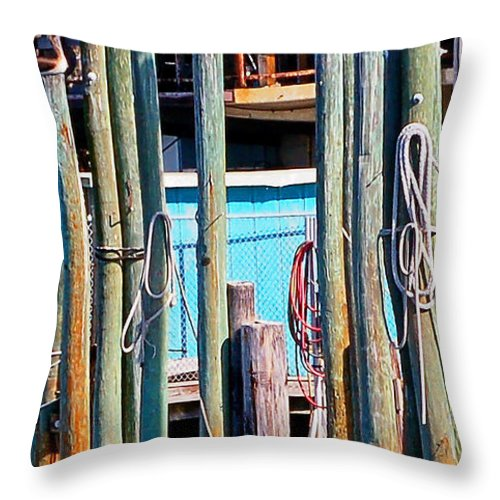 Animals Throw Pillow featuring the photograph Morning Ritual II by Donna Proctor
