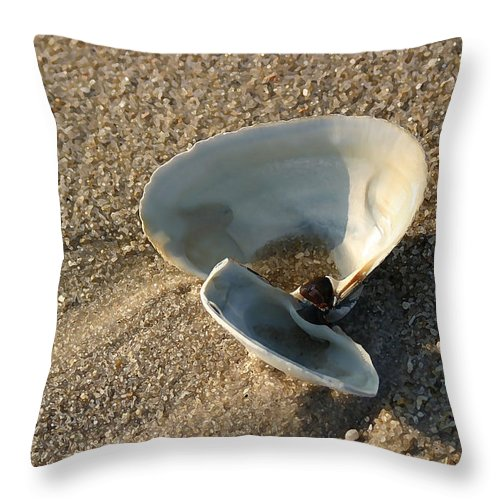 Seascape Throw Pillow featuring the photograph Morning Shadow by Mary Haber