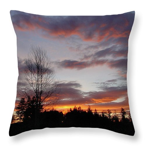 Sun Throw Pillow featuring the photograph Morning Silhouetted - 1 by Shirley Heyn