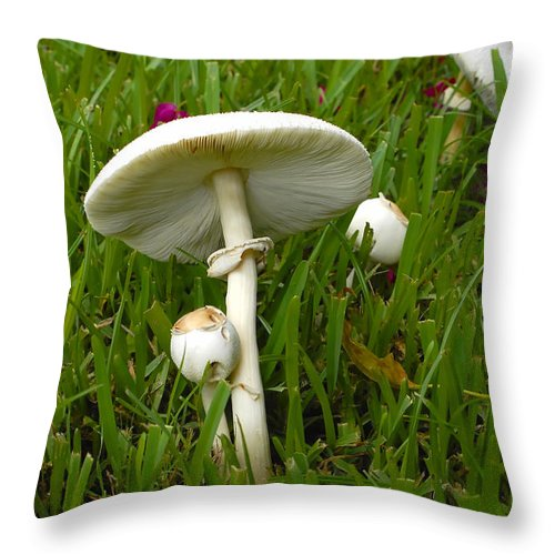 Mushrooms Throw Pillow featuring the photograph Morning Surprise by David Lee Thompson