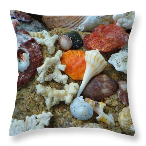 Shells Throw Pillow featuring the photograph Morning Treasures by Peggy King