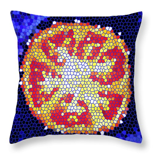 Tomato Throw Pillow featuring the photograph Mosaic Tomato by Nancy Mueller