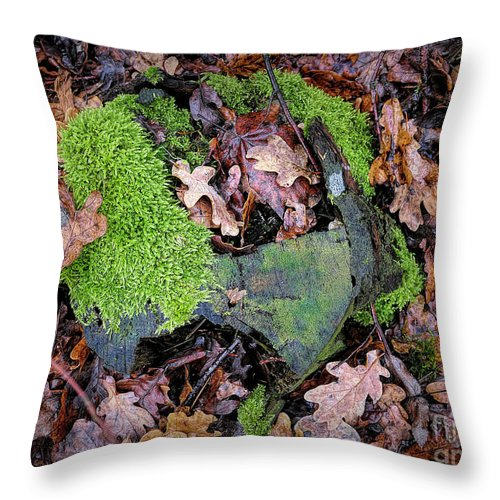 Moss Throw Pillow featuring the photograph Moss And Leaves by Elisabeth Lucas