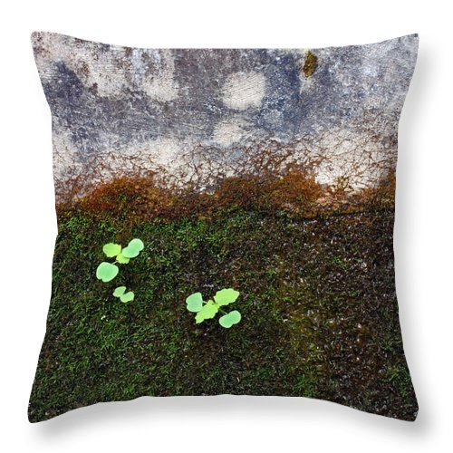 Nature Throw Pillow featuring the photograph Moss With Accents by Ted M Tubbs