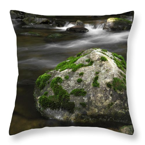Rock Throw Pillow featuring the photograph Mossy Boulder In Mountain Stream by John Stephens
