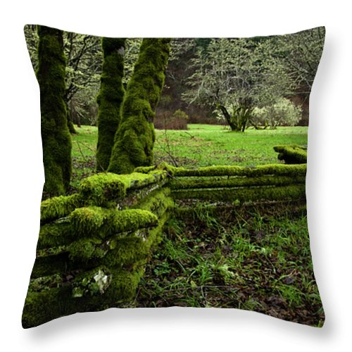 Moss Throw Pillow featuring the photograph Mossy Fence 2 by Bob Christopher