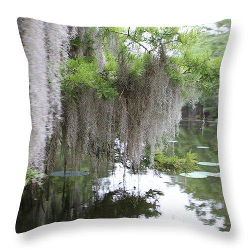 Nature Throw Pillow featuring the photograph Mossy by Matthew Felder