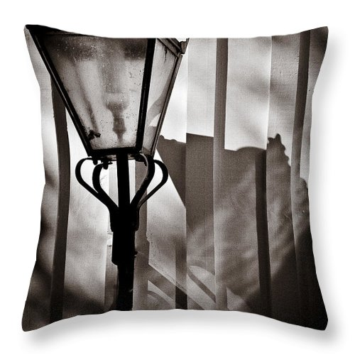 Moth Throw Pillow featuring the photograph Moth And Lamp by Dave Bowman