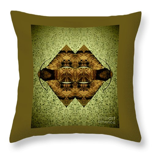 Moth Throw Pillow featuring the photograph Mother Earth by Michelle S White