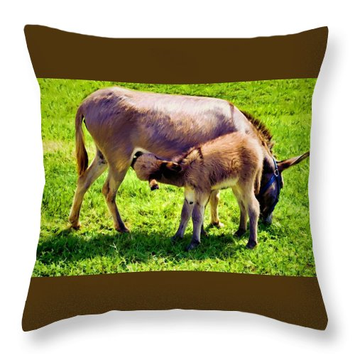 Animals Throw Pillow featuring the photograph Mother's Milk by Jan Amiss Photography
