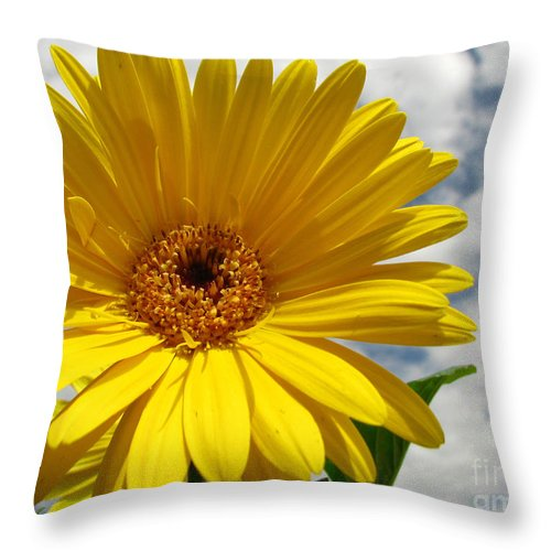 Floral Throw Pillow featuring the photograph Motivation by Amanda Barcon