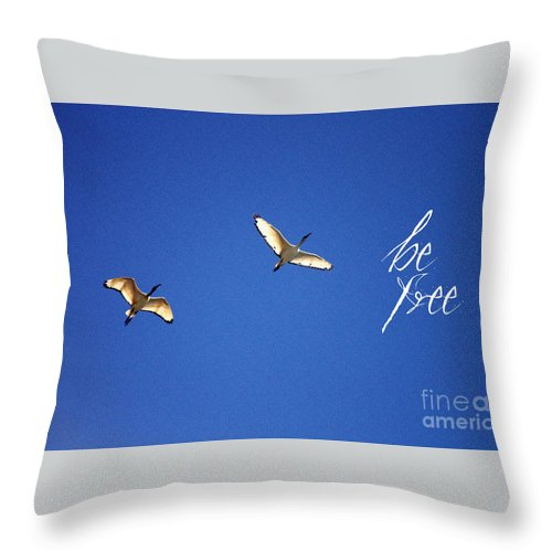 Motivational Quotes - Be Free Throw Pillow featuring the painting Motivational Quotes - Be Free by Celestial Images